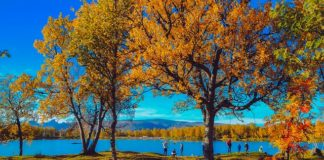 Familien Urlaub Herbst
